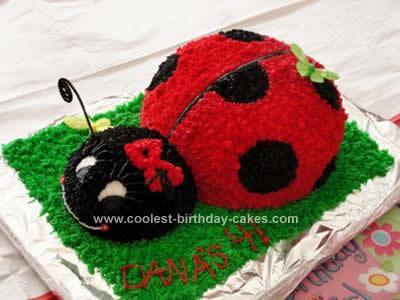 Homemade Ladybug Birthday Cake Design Pink And Black