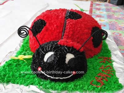 Swell Cool Homemade Ladybug Birthday Cake Design Funny Birthday Cards Online Alyptdamsfinfo
