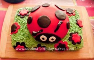 Fantastic Coolest Ladybug Birthday Cake Design Funny Birthday Cards Online Aeocydamsfinfo