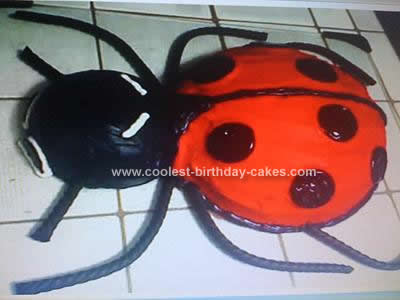 Homemade Ladybug Birthday Cake Idea