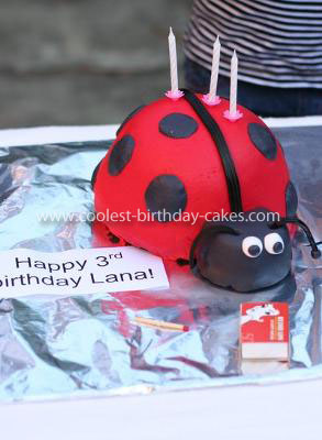 Coolest Ladybug Cake