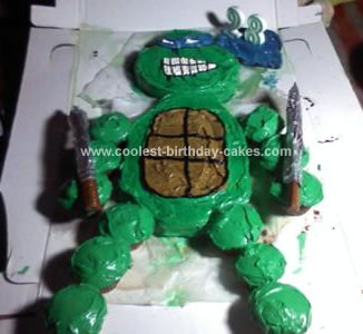 Homemade Leonardo Birthday Cake