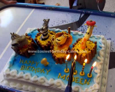 Homemade Madagascar Birthday Cake