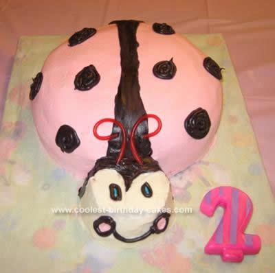 Homemade Pink Ladybug Birthday Cake Design