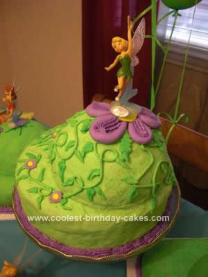Homemade Pixie Hollow Cake Collection