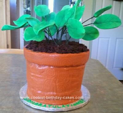Homemade Potted Plant Cake