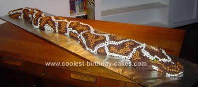 Homemade Python Snake Cake