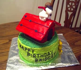 Homemade Red Baron Snoopy Cake