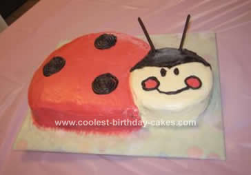 Homemade Red Ladybug Birthday Cake