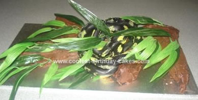 Homemade Snake Birthday Cake