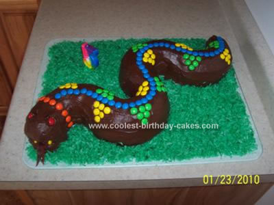 Homemade Snake Cake