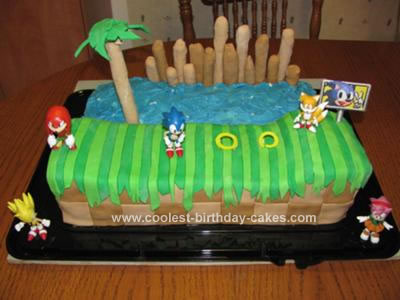Prime Coolest Homemade Sonic The Hedgehog Cakes Funny Birthday Cards Online Barepcheapnameinfo