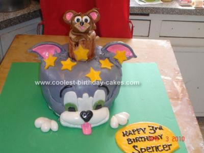 Prime Cool Homemade Tom And Jerry Birthday Cake Funny Birthday Cards Online Alyptdamsfinfo