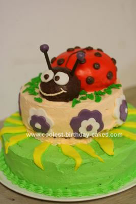 Homemade Triple Decker Lady Bug Cake
