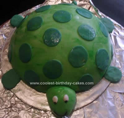 Homemade Turtle Cake Idea
