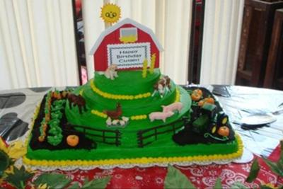 Cutlers 2nd Birthday Farm Cake