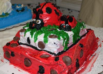 Marvelous Homemade Lady Bug Birthday Cake Ladybug Funny Birthday Cards Online Overcheapnameinfo