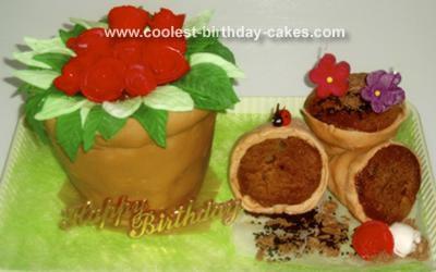 Edible Pots