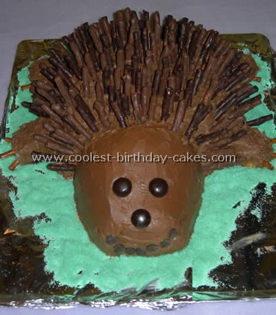 Coolest Hedgehog Decorated Birthday Cakes