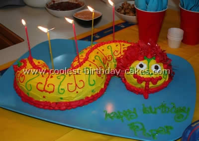 Cool and Fancy Birthday Cakes - Photo Gallery and How-To Tips