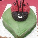 Coolest Lady Bug Cake Photos