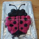 Coolest Ladybug Birthday Cake Photos and How-To Tips