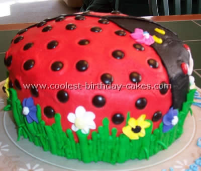 Ladybug Birthday Cakes 39a