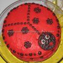 Coolest Ladybug Birthday Cakes