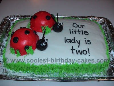 Fabulous Coolest Ladybug Cake Photos And How To Tips Funny Birthday Cards Online Aeocydamsfinfo