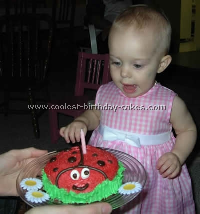 Coolest Ladybug Cake Photos and How-To Tips