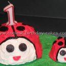 Cool Homemade Ladybug Cake Photos and How-To Tips