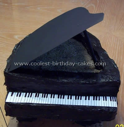 Web's Largest Homemade Birthday Cake Photo Gallery and Specialty Shaped Cakes Ideas