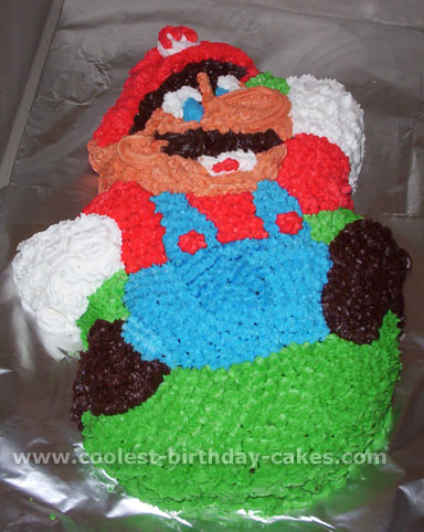 Coolest Super Mario Brother Cakes On The Web S Largest Homemade