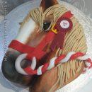 Beautiful pony head cake