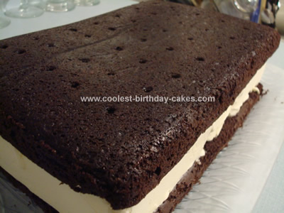 Coolest Giant Ice Cream Sandwich Cake