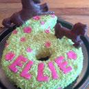 Horse and Pony Birthday Cakes