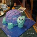 Baby Einstein Turtle Birthday Cakes