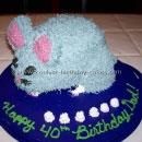 Chinchilla Birthday Cakes