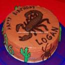 Scorpions Birthday Cakes