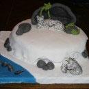 Leopard Birthday Cakes