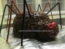 Spider Birthday Cakes