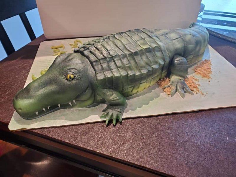 Alligator Birthday Cake