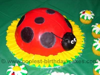 Ladybug Cake Photo