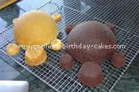 Turtle Birthday Cake Picture